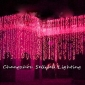 Wholesale NEW!Christmas light wedding celebration showcase decoration 2*4m Pink H288(4)