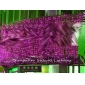 Wholesale GREAT!Wedding celebration product door decoration 3*8m LED star lamp Pink H315(6)